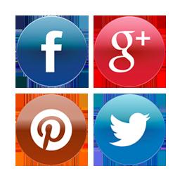 icone-social
