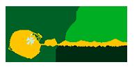 Desenvolvimento de Sites - GLR GEMAS DO BRASIL